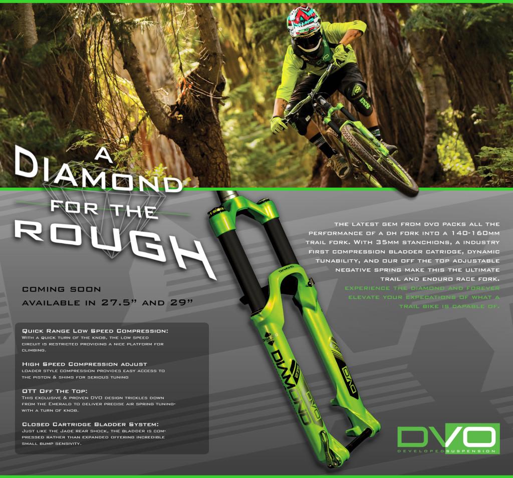 Diamond-Features-01B